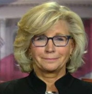 Liz Cheney on her hopes for the 116th Congress