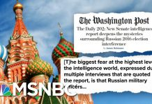 Senate Intel Report Details Extensive Russian Interference In 2016 Election | Deadline | MSNBC