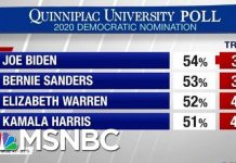 President Donald Trump Lagging Behind Democrats In 2020 Matchups | Hardball | MSNBC